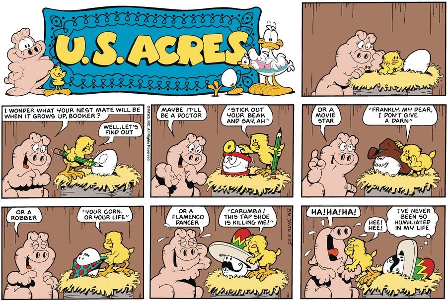U.S. Acres Comic Strip for July 09, 1989