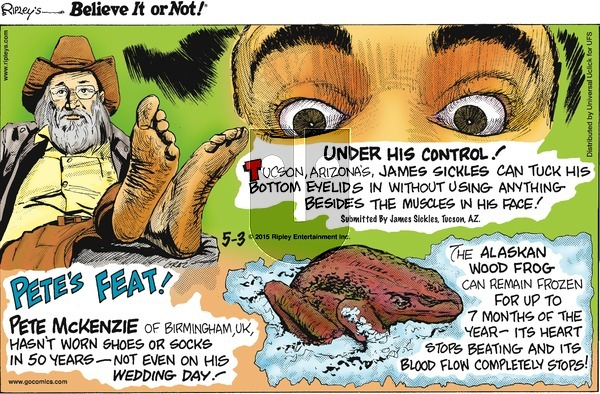 Ripley's Believe It or Not on Sunday May 3, 2015 Comic Strip