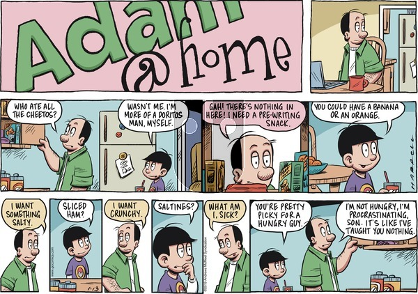 Adam@Home on Sunday January 13, 2019 Comic Strip