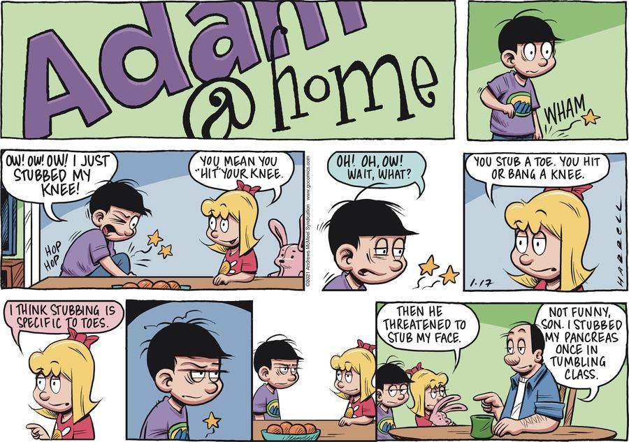 Adam@Home Comic Strip for January 17, 2021