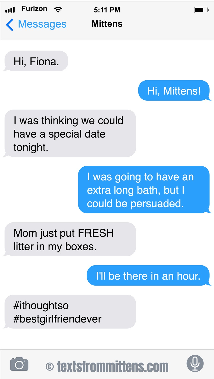 Texts From Mittens Comic Strip for March 29, 2020