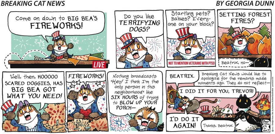 Breaking Cat News Comic Strip for July 04, 2021