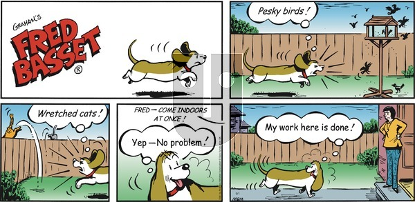 Fred Basset on Sunday September 1, 2019 Comic Strip