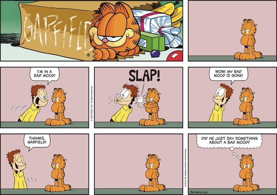 Garfield Comic Strip for October 11, 2020