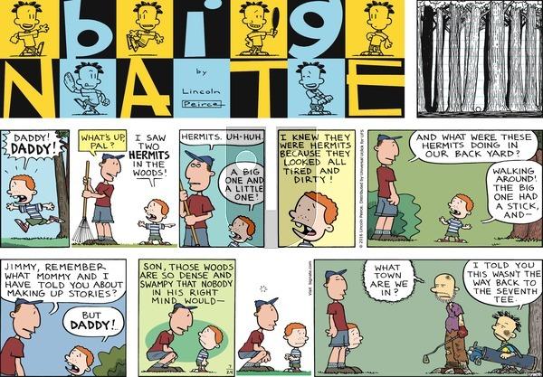 Big Nate on Sunday July 24, 2016 Comic Strip