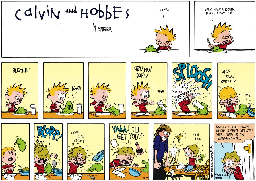 Calvin and Hobbes Comic Strip for December 07, 2014