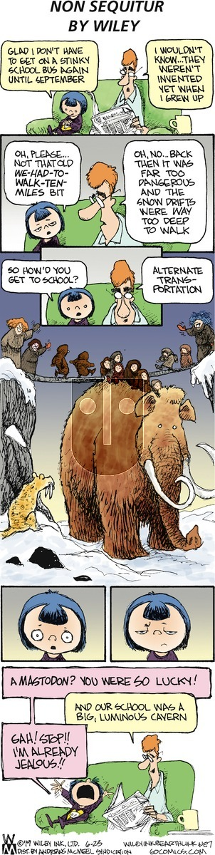 Non Sequitur on Sunday June 23, 2019 Comic Strip