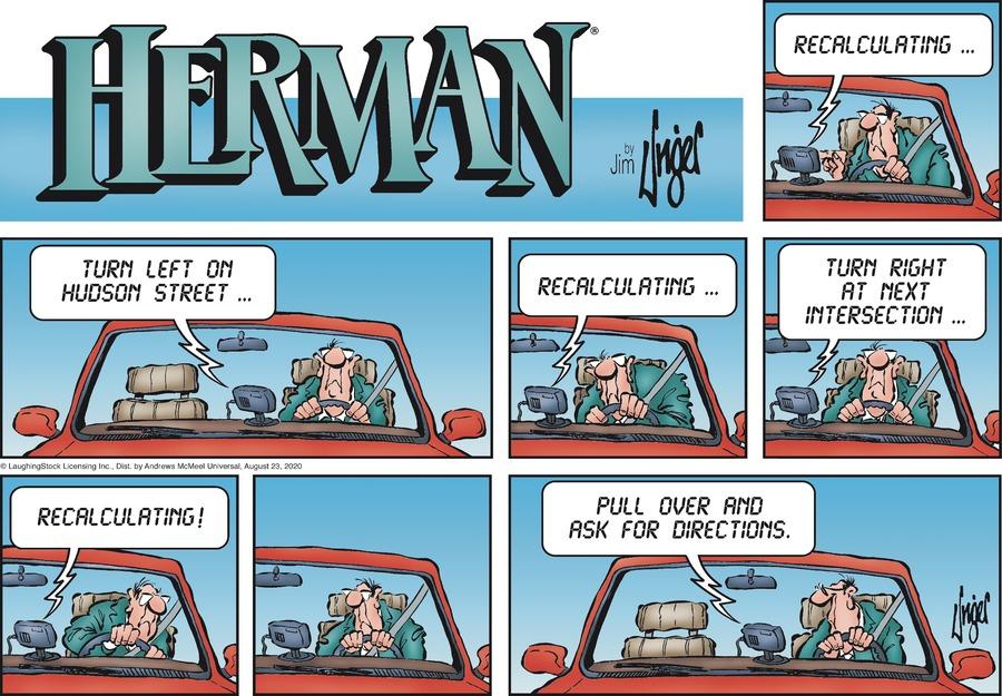 Herman Comic Strip for August 23, 2020