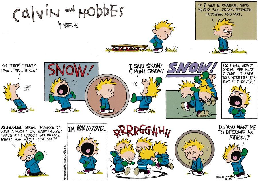 Calvin and Hobbes Comic Strip for November 27, 1988