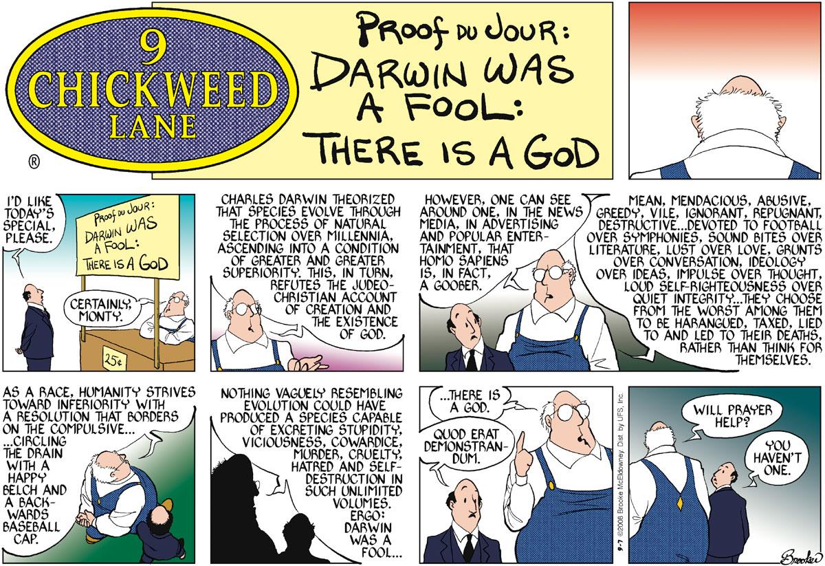 9 Chickweed Lane Comic Strip for September 07, 2008