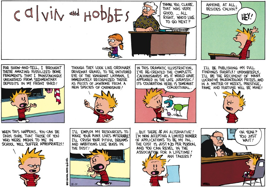 Calvin and Hobbes Comic Strip for December 14, 2014
