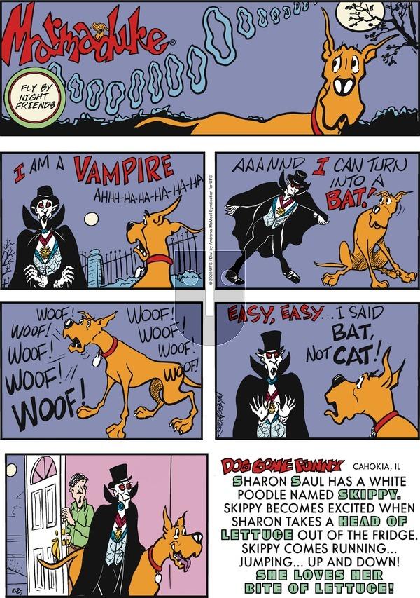 Marmaduke on Sunday October 25, 2020 Comic Strip