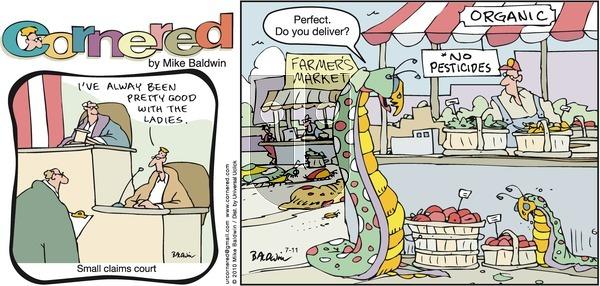 Cornered on Sunday July 11, 2010 Comic Strip