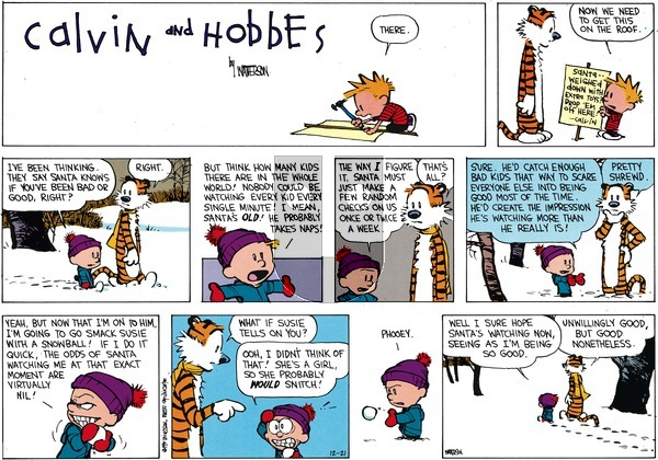 Calvin and Hobbes on Sunday December 21, 2014 Comic Strip