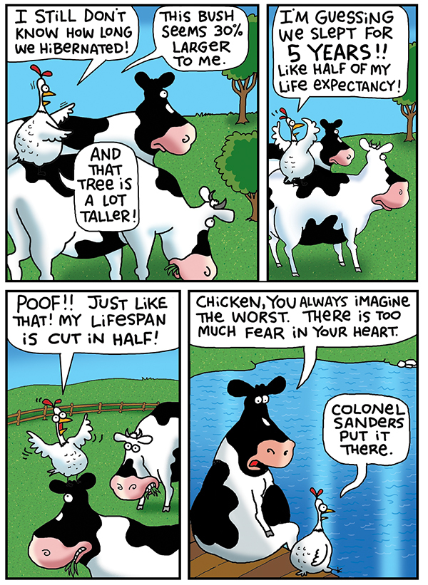 2 Cows and a Chicken by Steve Skelton for May 24, 2019