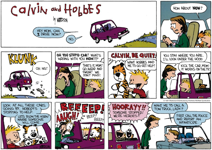 Calvin and Hobbes Comic Strip for May 30, 2021