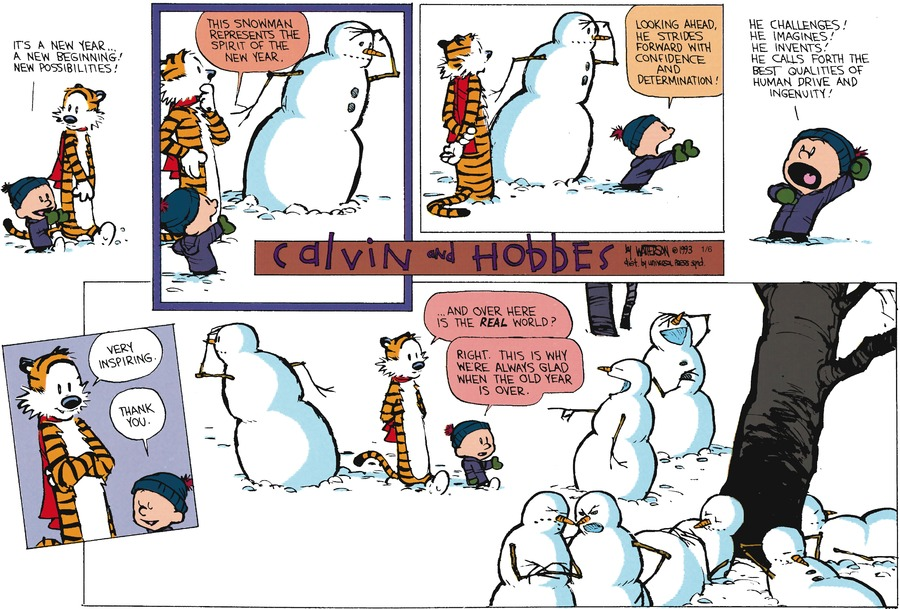 Calvin and Hobbes Comic Strip for January 06, 2013