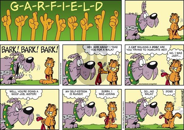 Garfield on Sunday January 15, 2012 Comic Strip