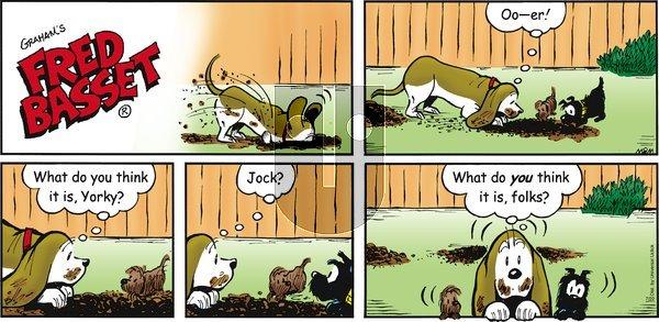 Fred Basset - Sunday July 22, 2012 Comic Strip