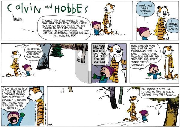 Calvin and Hobbes - Sunday December 28, 2014 Comic Strip