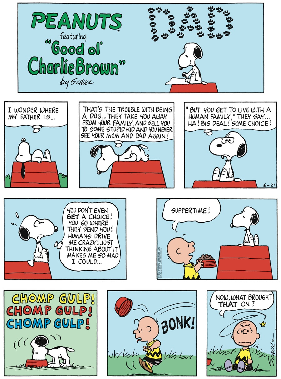 Peanuts by Charles Schulz on Sun, 21 Jun 2020