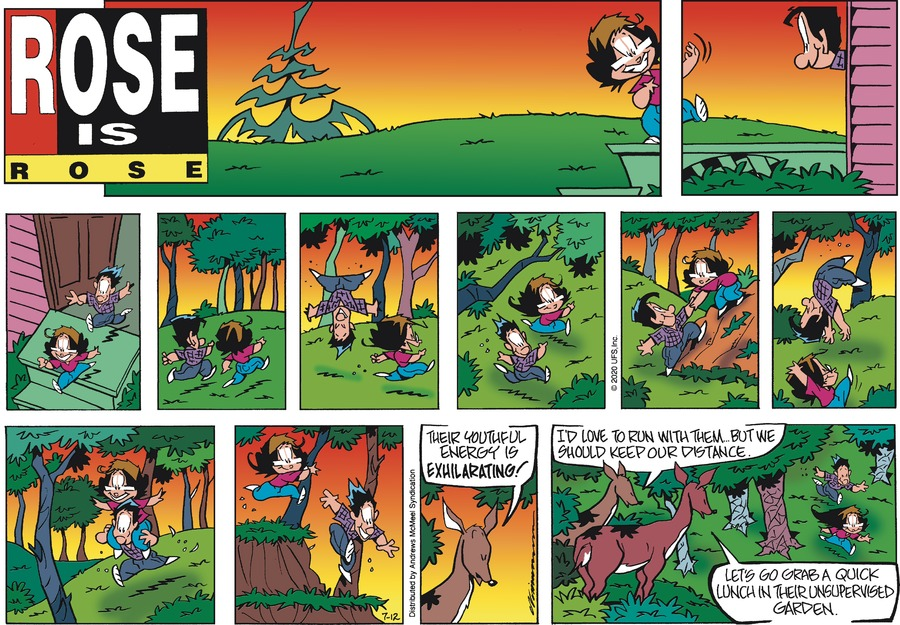 Rose is Rose Comic Strip for July 12, 2020
