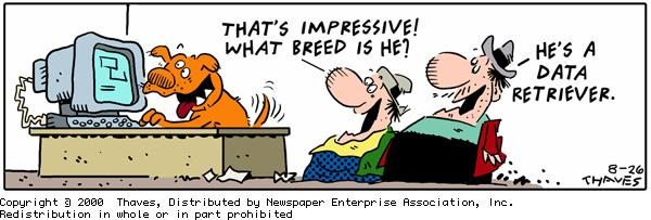 """That's impressive! What breed is he?""
