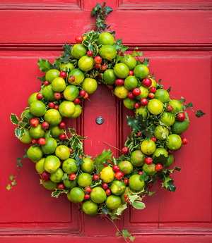 A wreath of limes and crab apples by Laura Dowling with accents of variegated holly strike a festive note on a bright red door in historic Old Town Alexandria, Virginia.