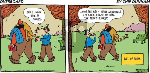 Overboard on Sunday November 25, 2018 Comic Strip