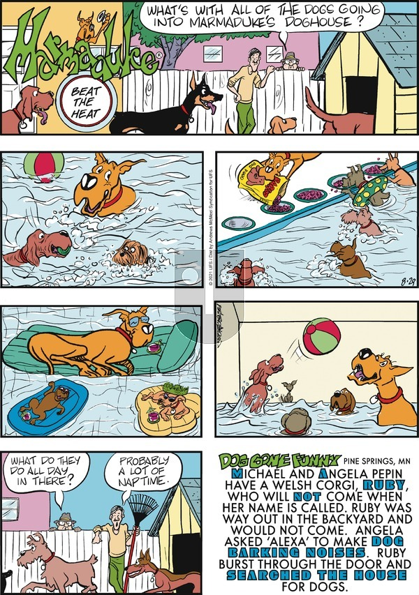 Marmaduke - Sunday August 29, 2021 Comic Strip