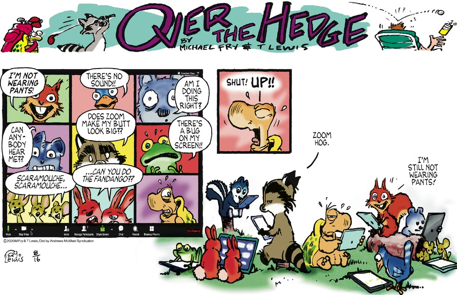 Over the Hedge Comic Strip for August 16, 2020