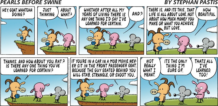 Pearls Before Swine Comic Strip for May 31, 2020