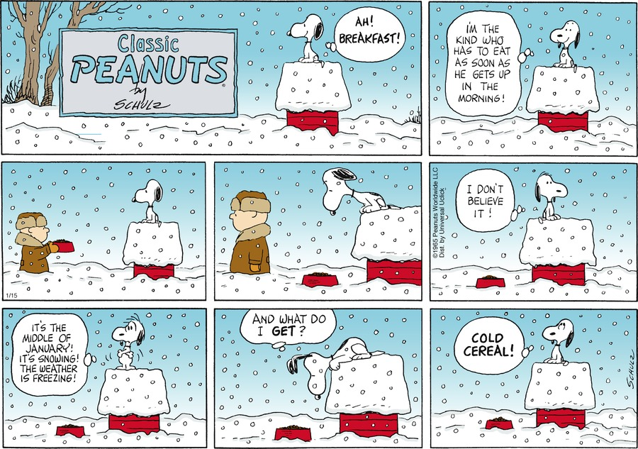 Peanuts for Jan 15, 2012 Comic Strip