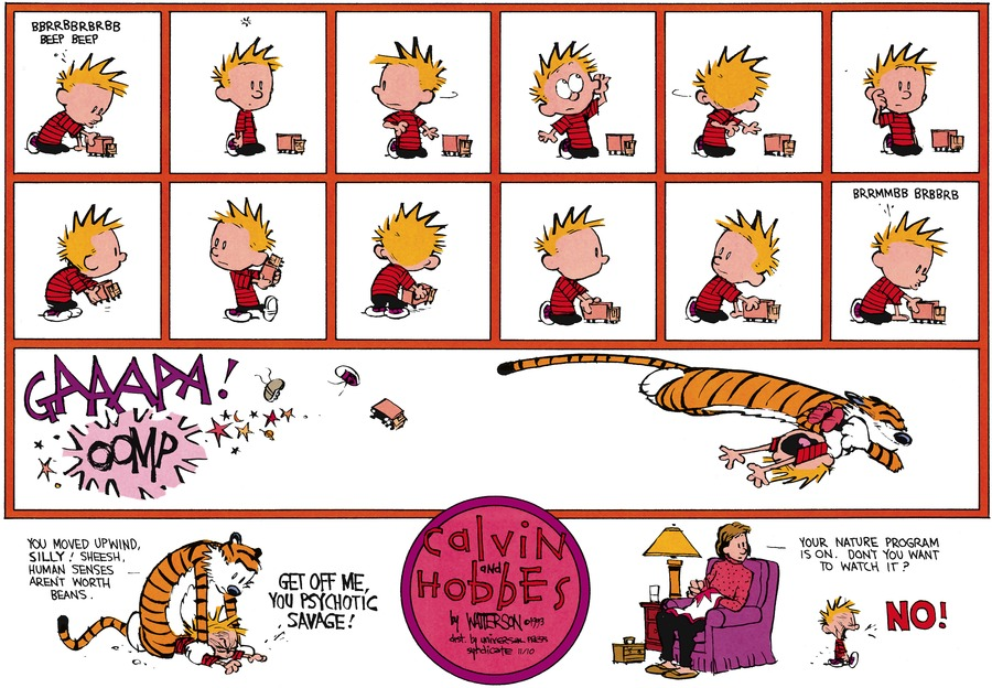 Calvin and Hobbes Comic Strip for November 10, 2013