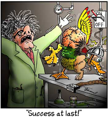 Birdbrains Comic Strip for October 23, 2019