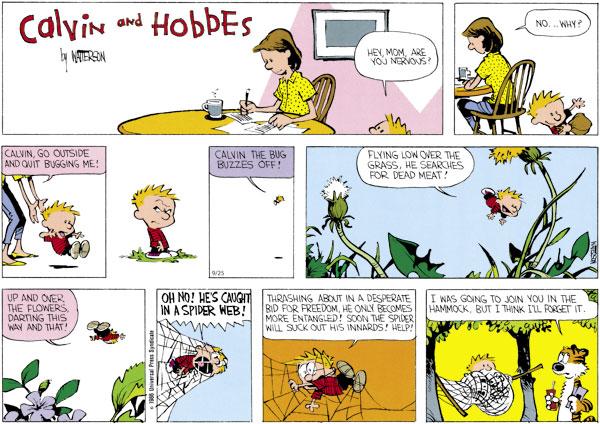 Calvin and Hobbes Comic Strip for September 25, 2011