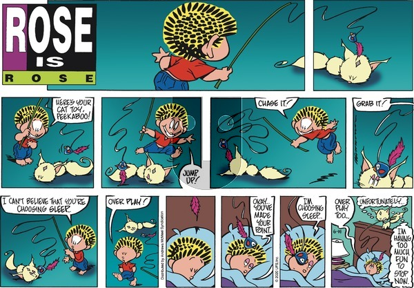 Rose is Rose - Sunday June 14, 2020 Comic Strip