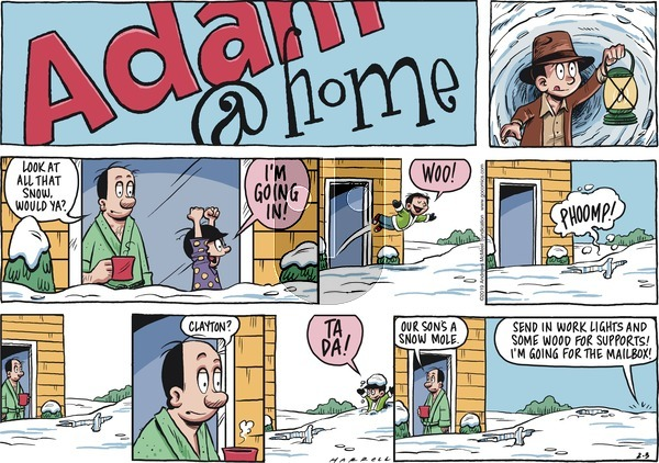 Adam@Home on Sunday February 3, 2019 Comic Strip