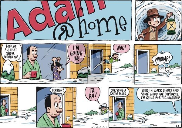 Adam@Home on Sunday February 3, 2019 Comic Strip