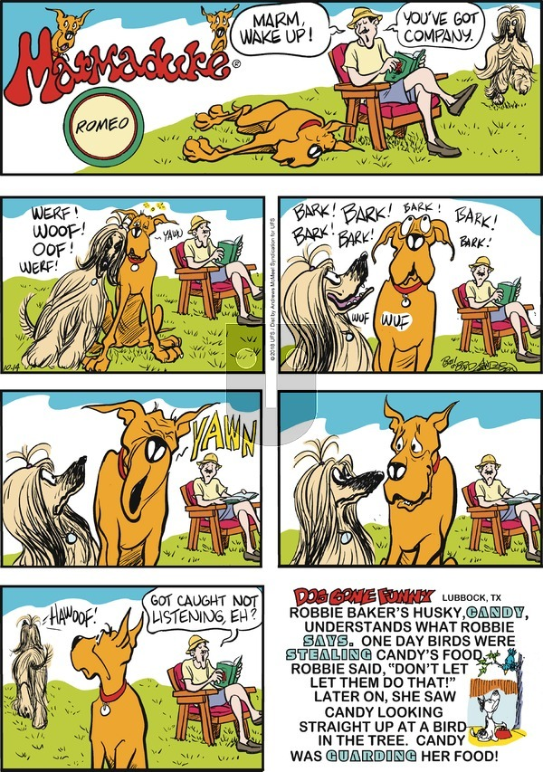 Marmaduke on Sunday October 14, 2018 Comic Strip