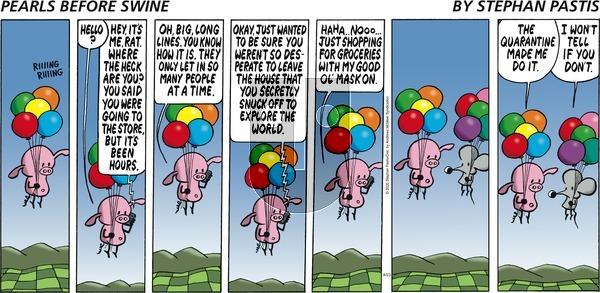 Pearls Before Swine - Sunday August 23, 2020 Comic Strip