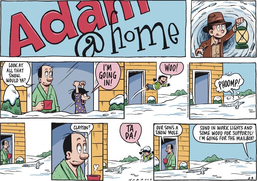 Adam@Home Comic Strip for February 03, 2019