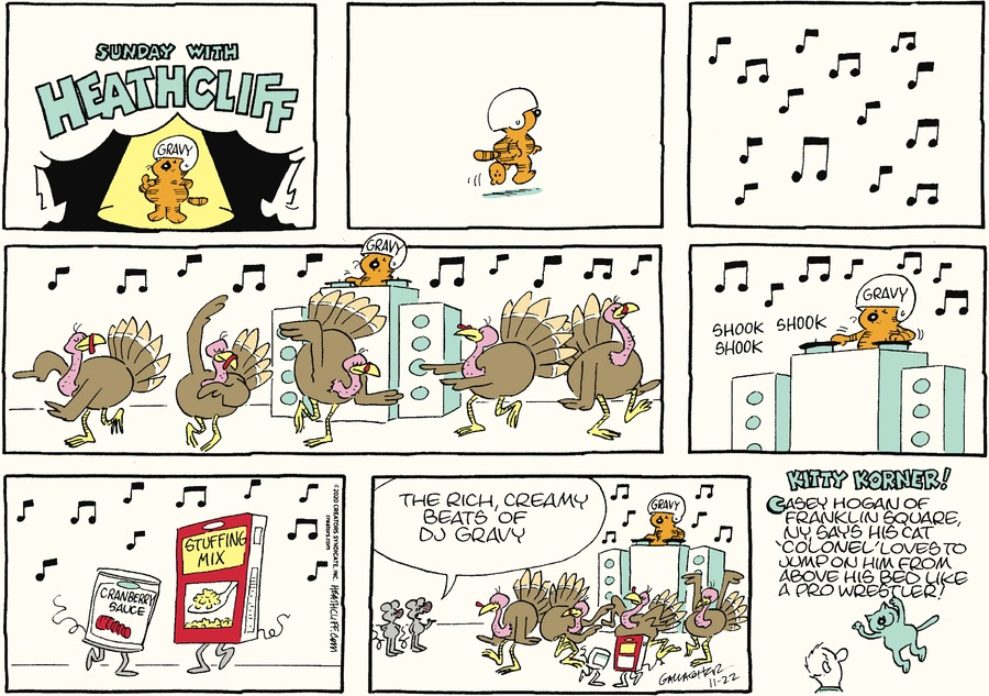 Heathcliff Comic Strip for November 22, 2020