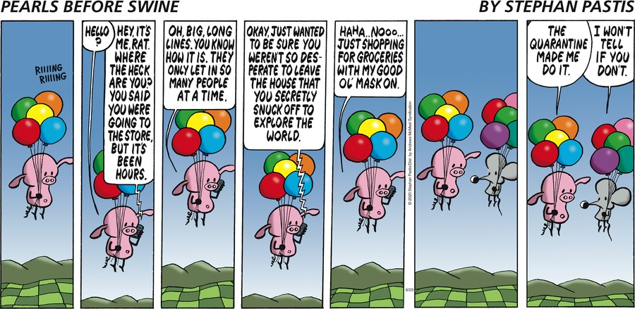 Pearls Before Swine Comic Strip for August 23, 2020