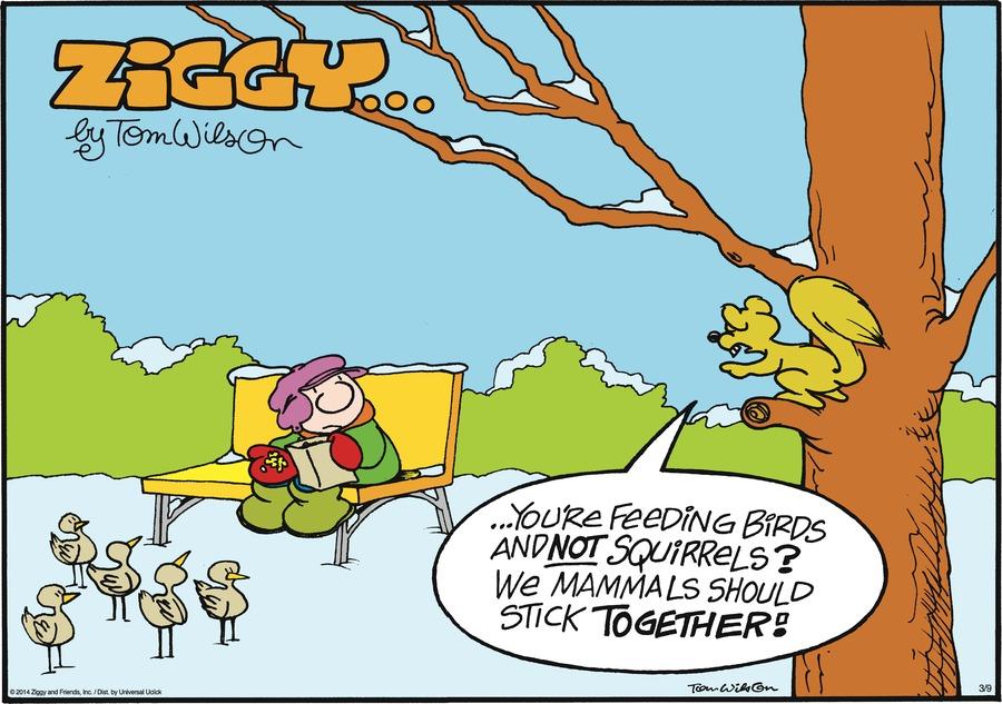 Ziggy for Mar 9, 2014 Comic Strip