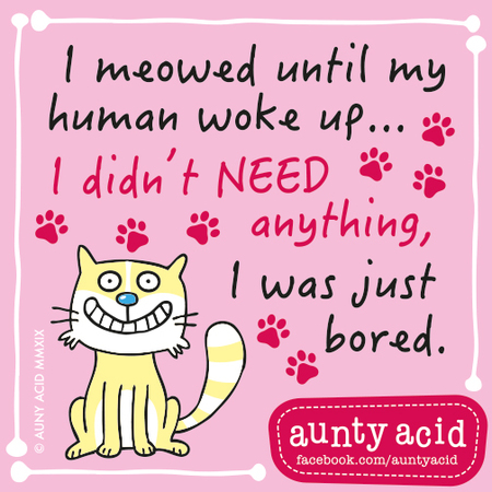 Aunty Acid by Ged Backland for February 28, 2019