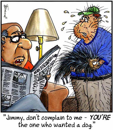 Birdbrains Comic Strip for May 20, 2018