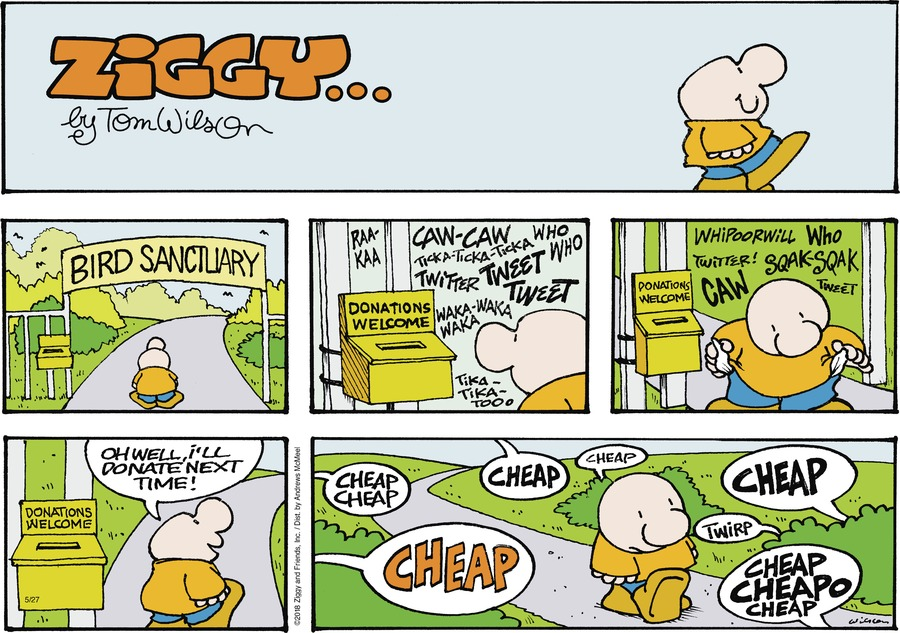 Ziggy Comic Strip for May 27, 2018