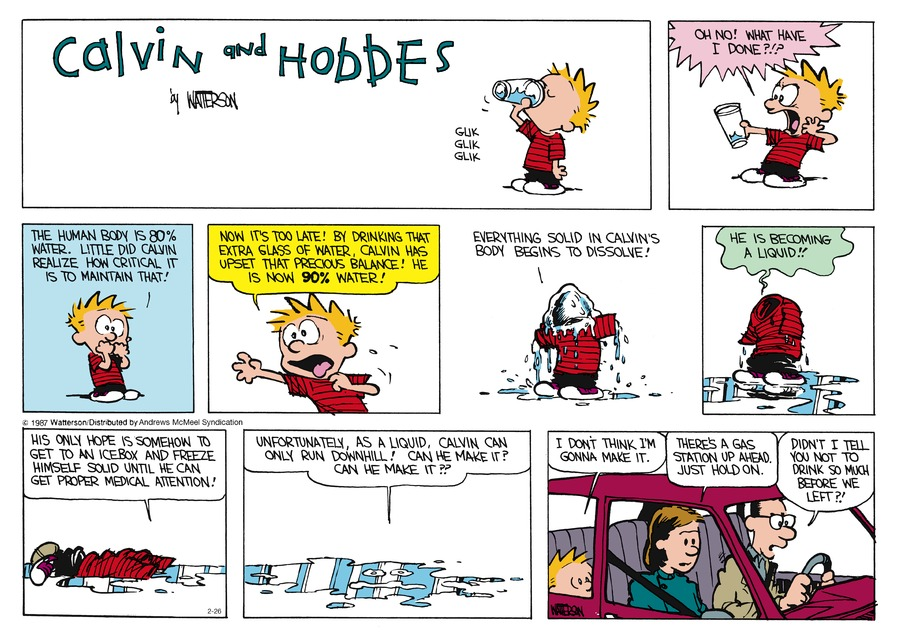 Calvin and Hobbes Comic Strip for February 26, 2017