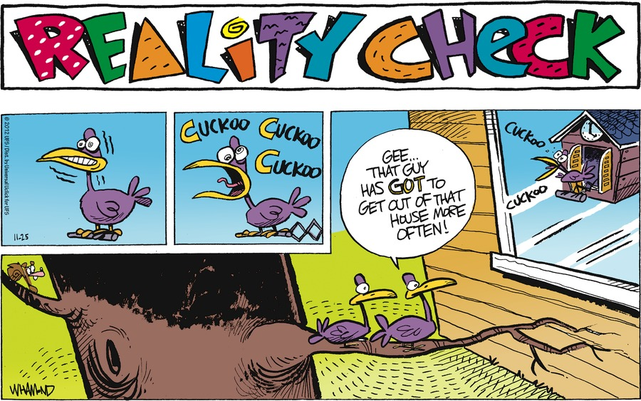Reality Check Cuckoo Cuckoo Cuckoo  Gee... That guy has got to get out of that house more often! Cuckoo Cuckoo